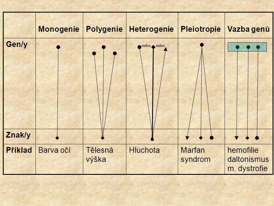 Monogenie Polygenie. Heterogenie. Pleiotropie. Vazba genů. Gen/y. nebo nebo. Znak/y. Příklad.