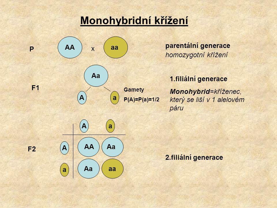 Monohybridní křížení AA aa P x parentální generace homozygotní křížení