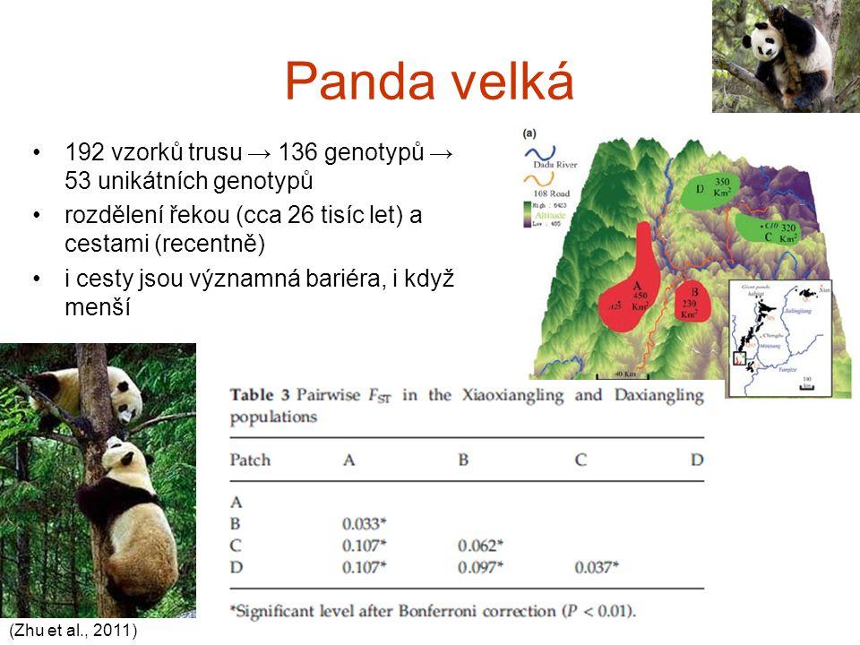 Panda velká 192 vzorků trusu → 136 genotypů → 53 unikátních genotypů