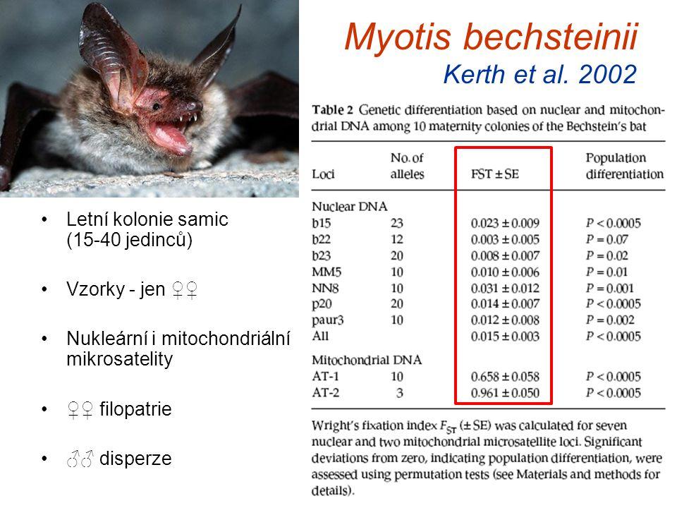 Myotis bechsteinii Kerth et al. 2002