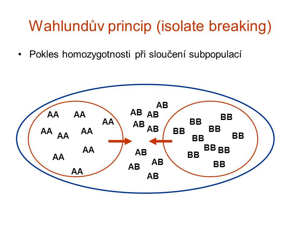 Wahlundův princip (isolate breaking)