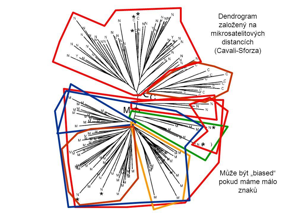 Dendrogram založený na mikrosatelitových distancích