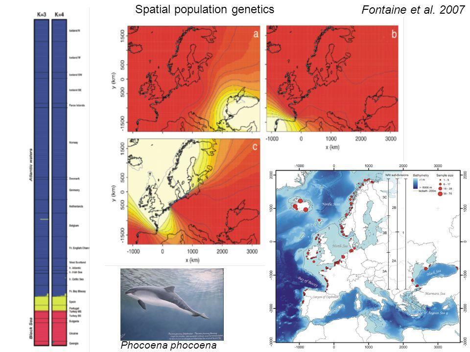 Spatial population genetics Fontaine et al. 2007