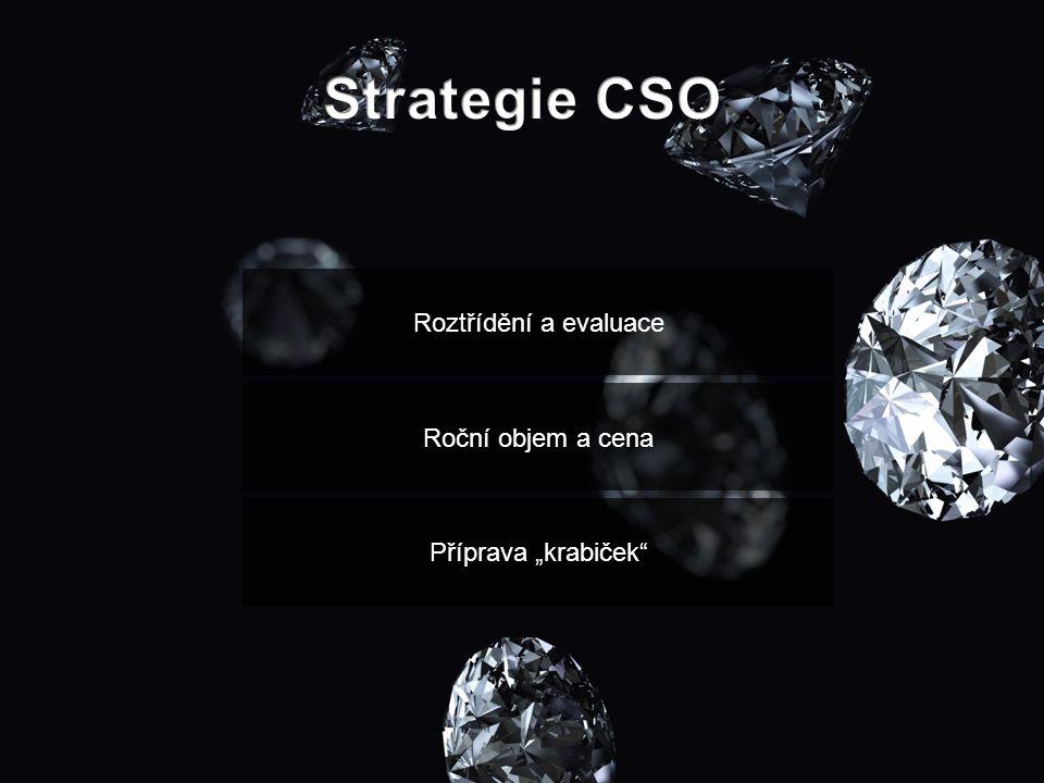 Strategie CSO Roztřídění a evaluace Roční objem a cena