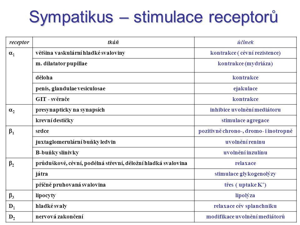 Sympatikus – stimulace receptorů