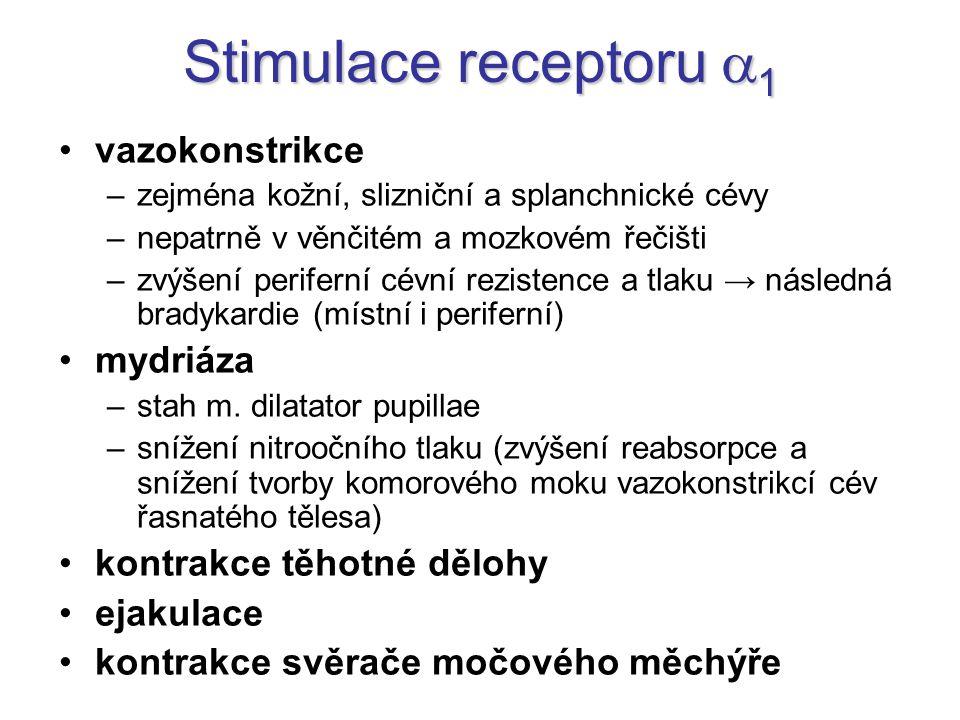 Stimulace receptoru 1 vazokonstrikce mydriáza