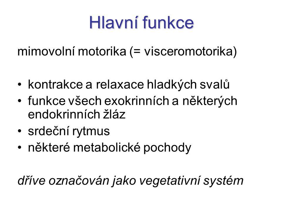 Hlavní funkce mimovolní motorika (= visceromotorika)