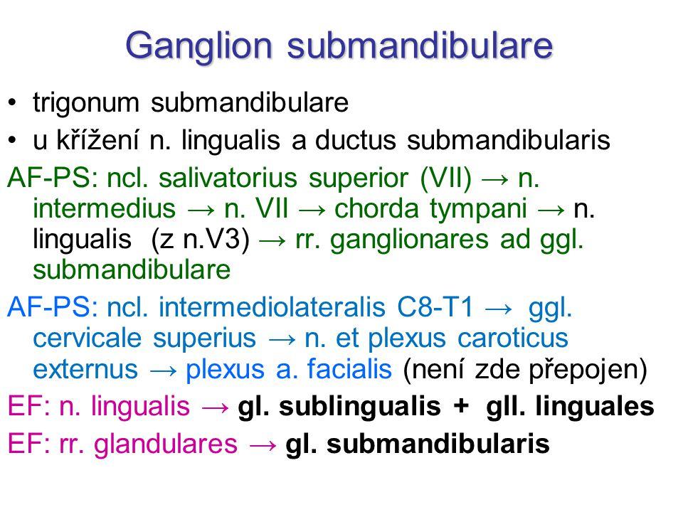 Ganglion submandibulare