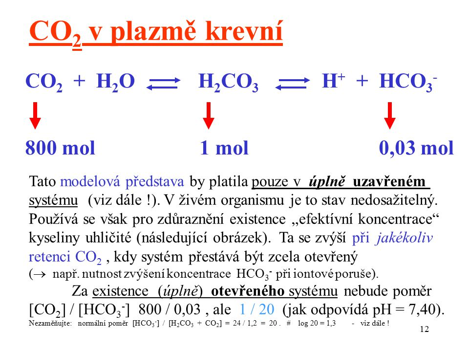 CO2 v plazmě krevní CO2 + H2O H2CO3 H+ + HCO3- 800 mol 1 mol 0,03 mol