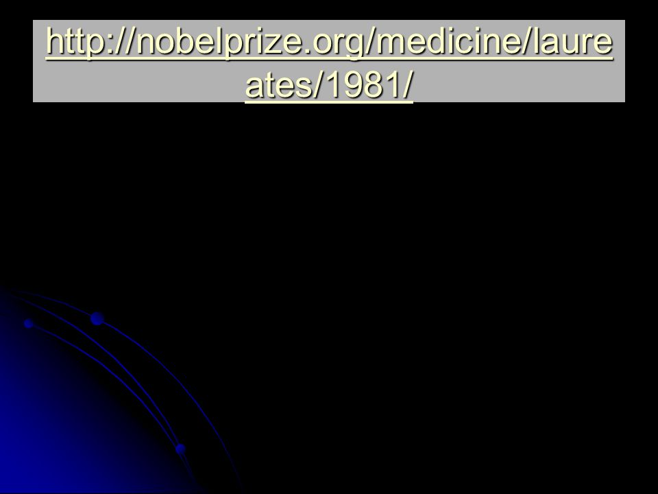 http://nobelprize.org/medicine/laureates/1981/