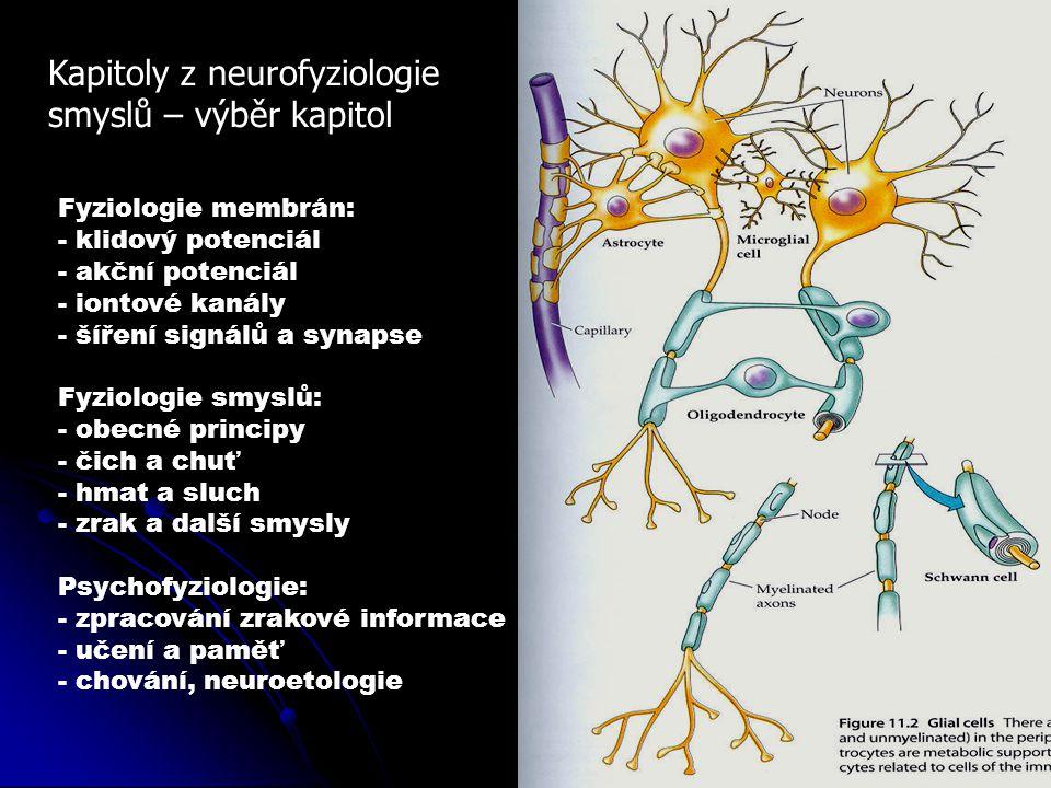 Kapitoly z neurofyziologie smyslů – výběr kapitol