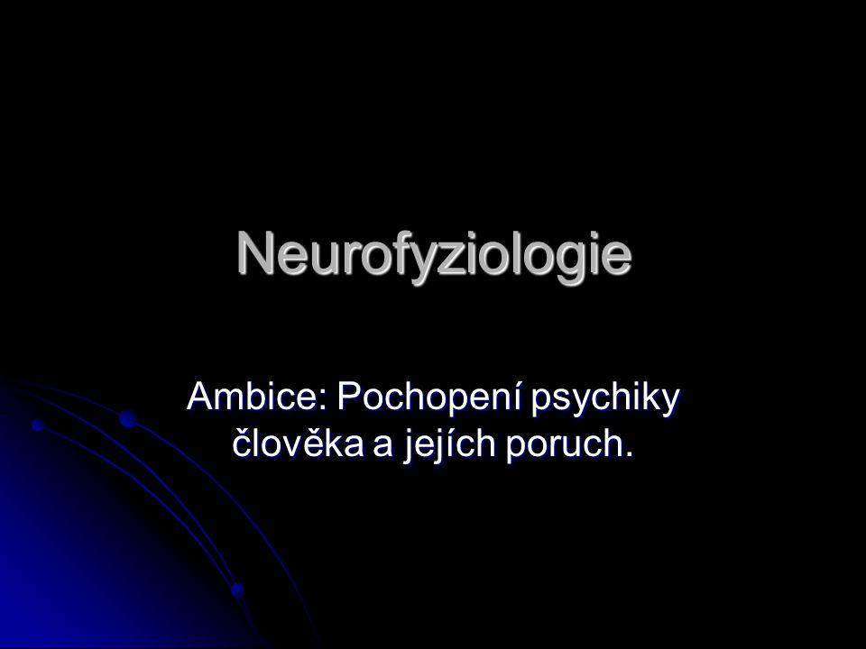 Ambice: Pochopení psychiky člověka a jejích poruch.