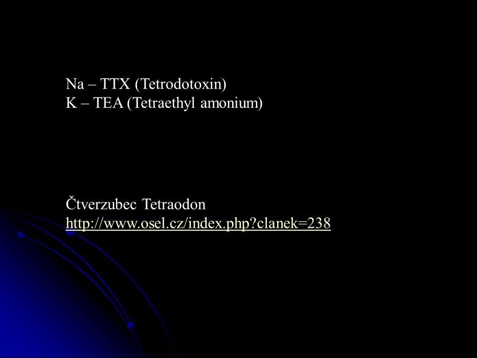 Na – TTX (Tetrodotoxin)
