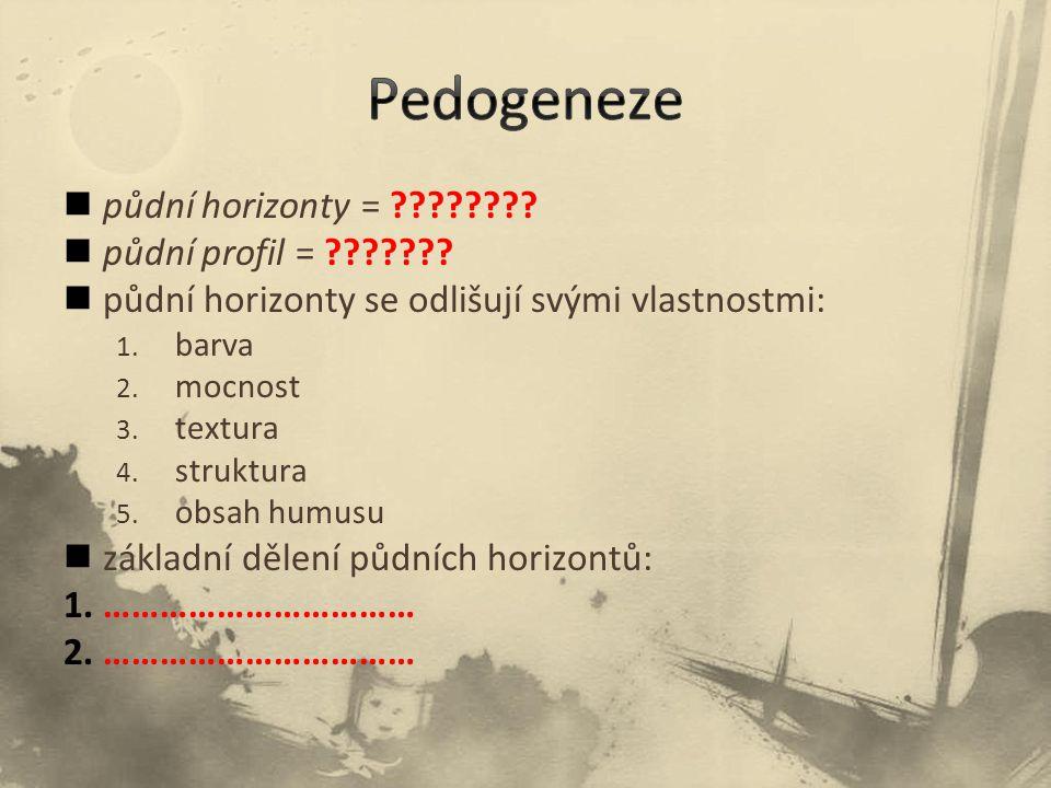 Pedogeneze půdní horizonty = půdní profil =