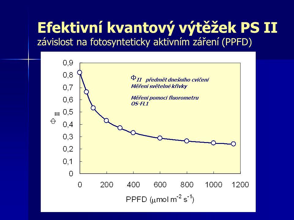 Efektivní kvantový výtěžek PS II závislost na fotosynteticky aktivním záření (PPFD)