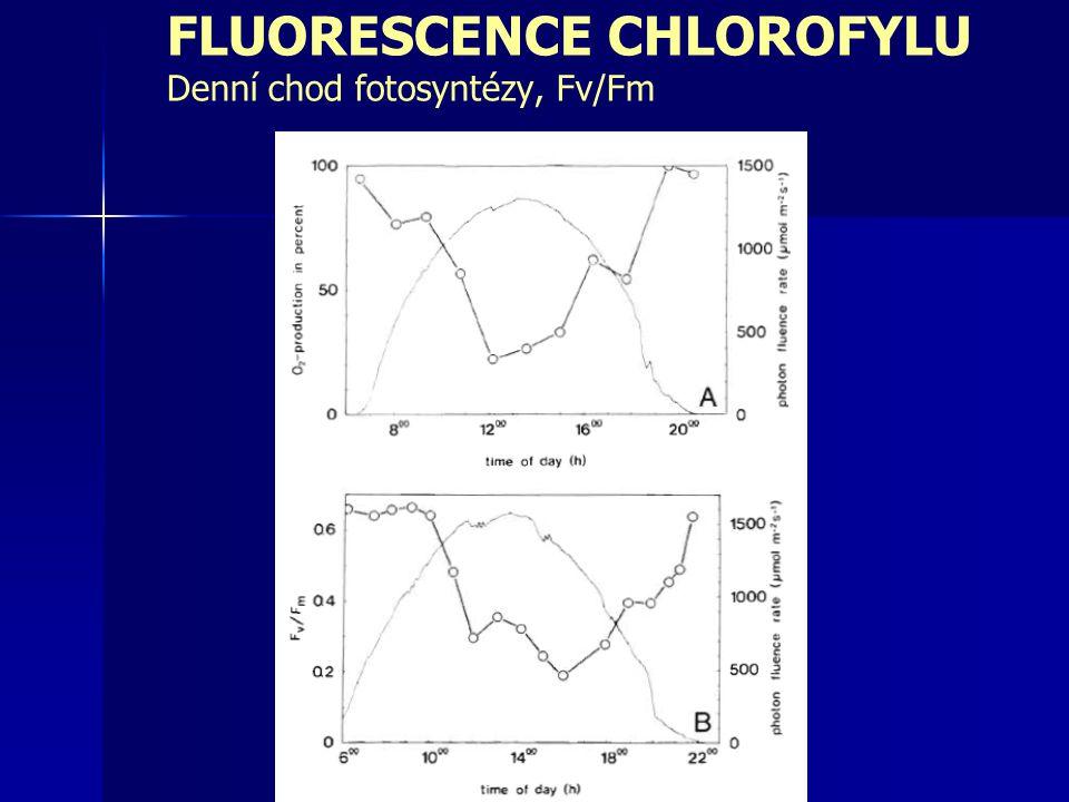 FLUORESCENCE CHLOROFYLU Denní chod fotosyntézy, Fv/Fm