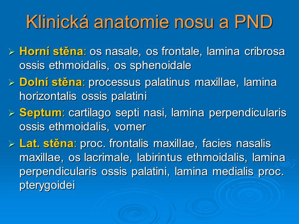 Klinická anatomie nosu a PND