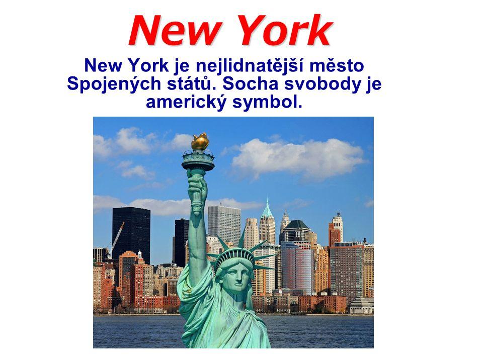 New York New York je nejlidnatější město Spojených států. Socha svobody je americký symbol.