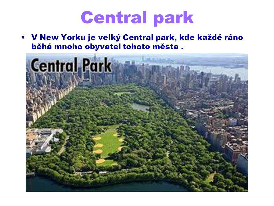 Central park V New Yorku je velký Central park, kde každé ráno běhá mnoho obyvatel tohoto města .