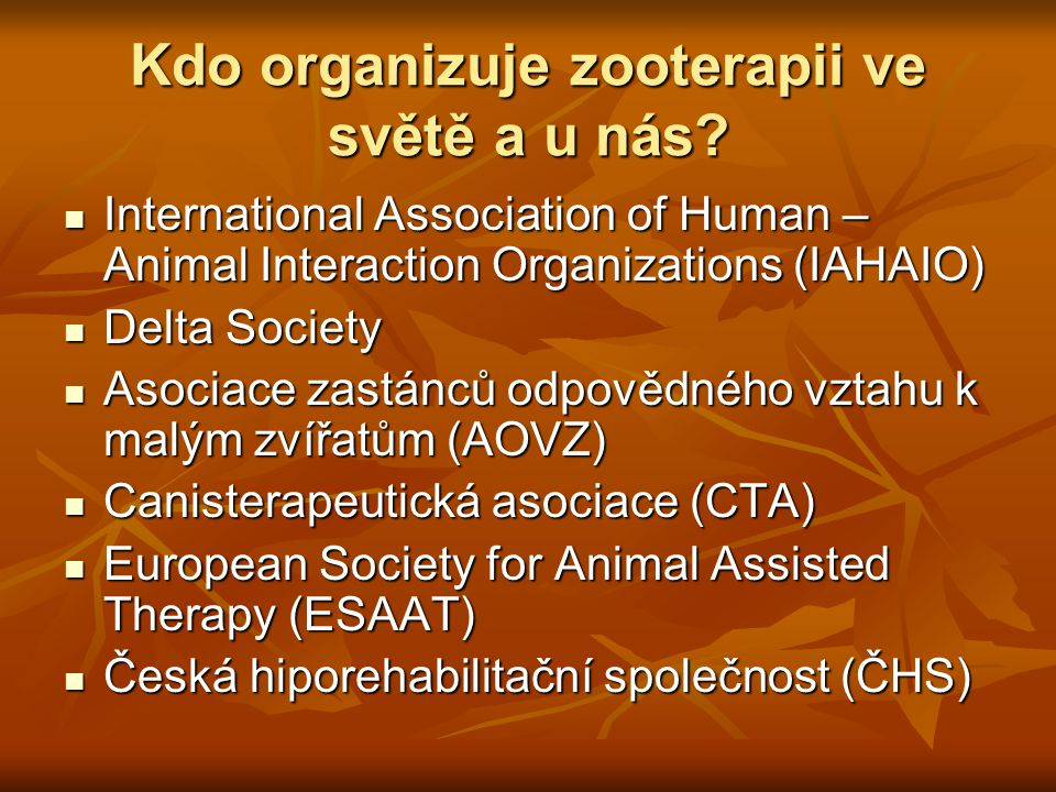 Kdo organizuje zooterapii ve světě a u nás