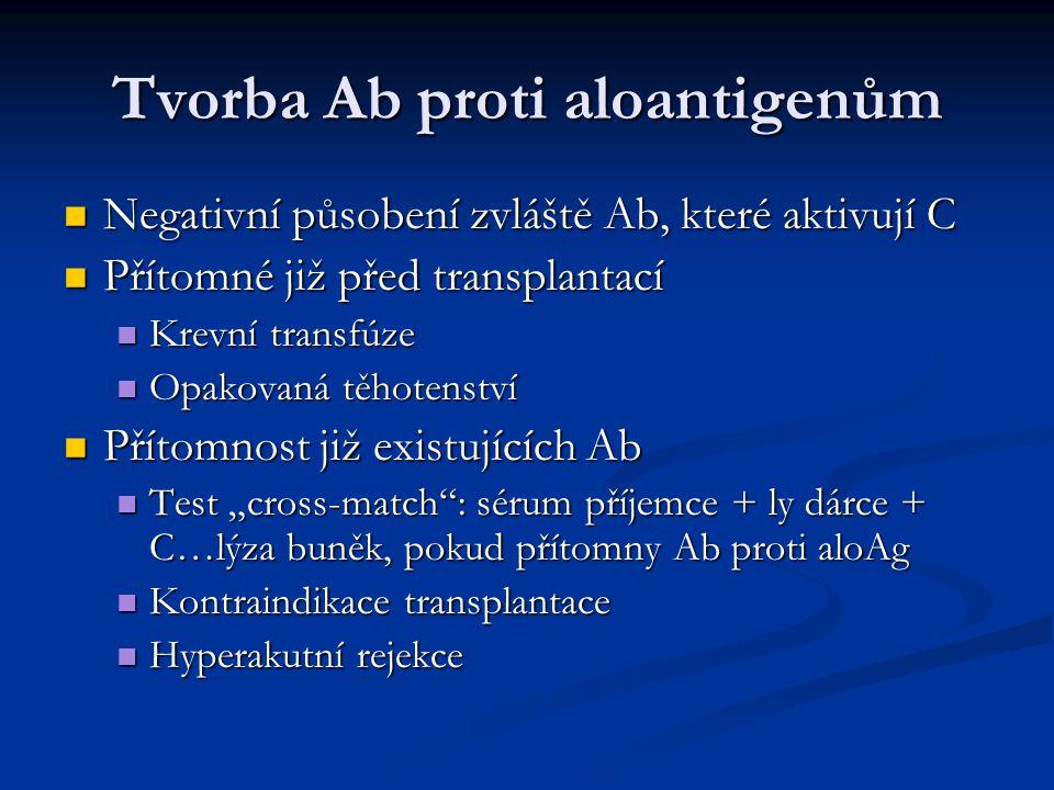Tvorba Ab proti aloantigenům