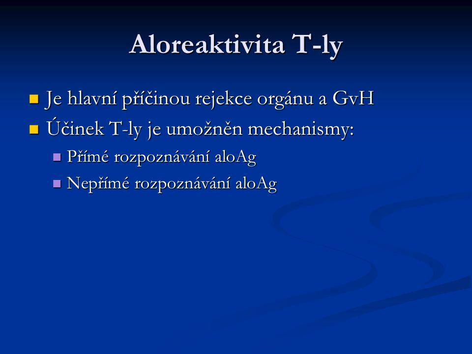 Aloreaktivita T-ly Je hlavní příčinou rejekce orgánu a GvH