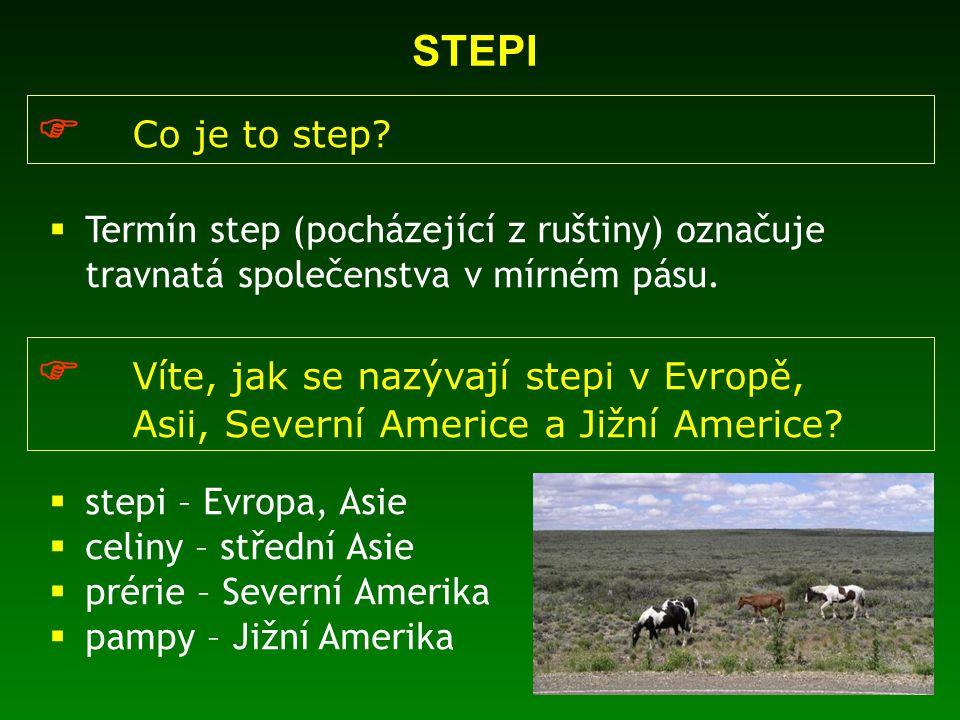  Víte, jak se nazývají stepi v Evropě,