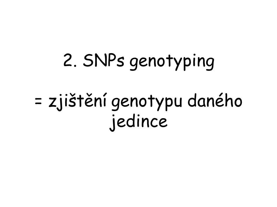 2. SNPs genotyping = zjištění genotypu daného jedince