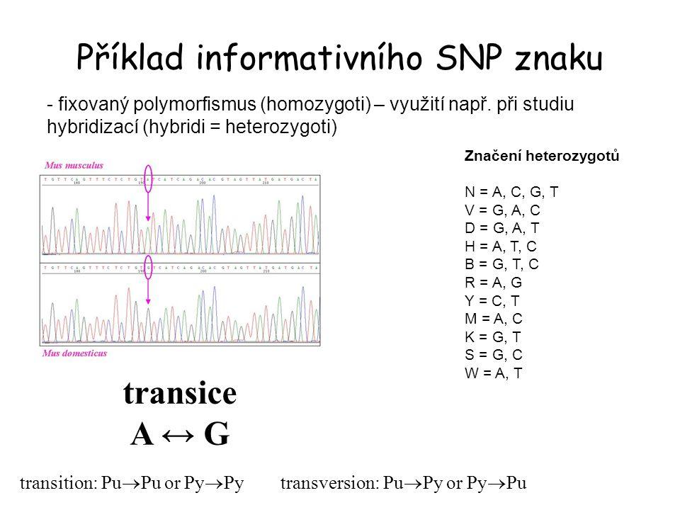 Příklad informativního SNP znaku