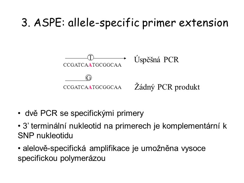 3. ASPE: allele-specific primer extension