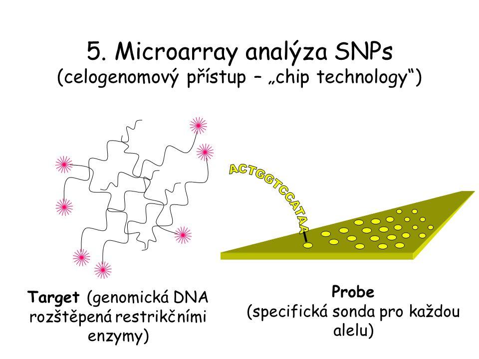 """5. Microarray analýza SNPs (celogenomový přístup – """"chip technology )"""