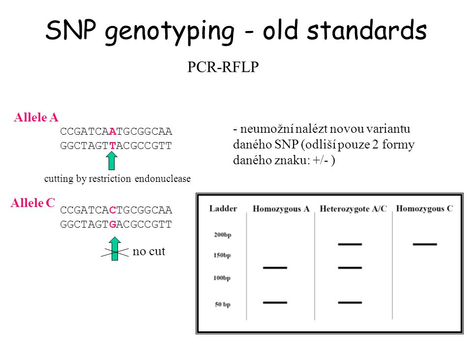 SNP genotyping - old standards