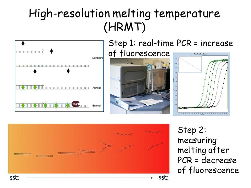 High-resolution melting temperature (HRMT)