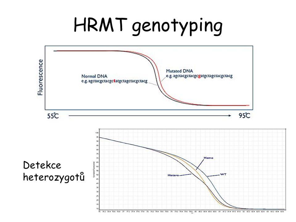 HRMT genotyping Detekce heterozygotů
