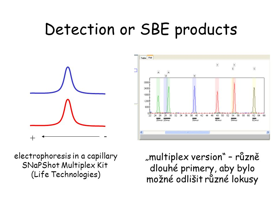 Detection or SBE products