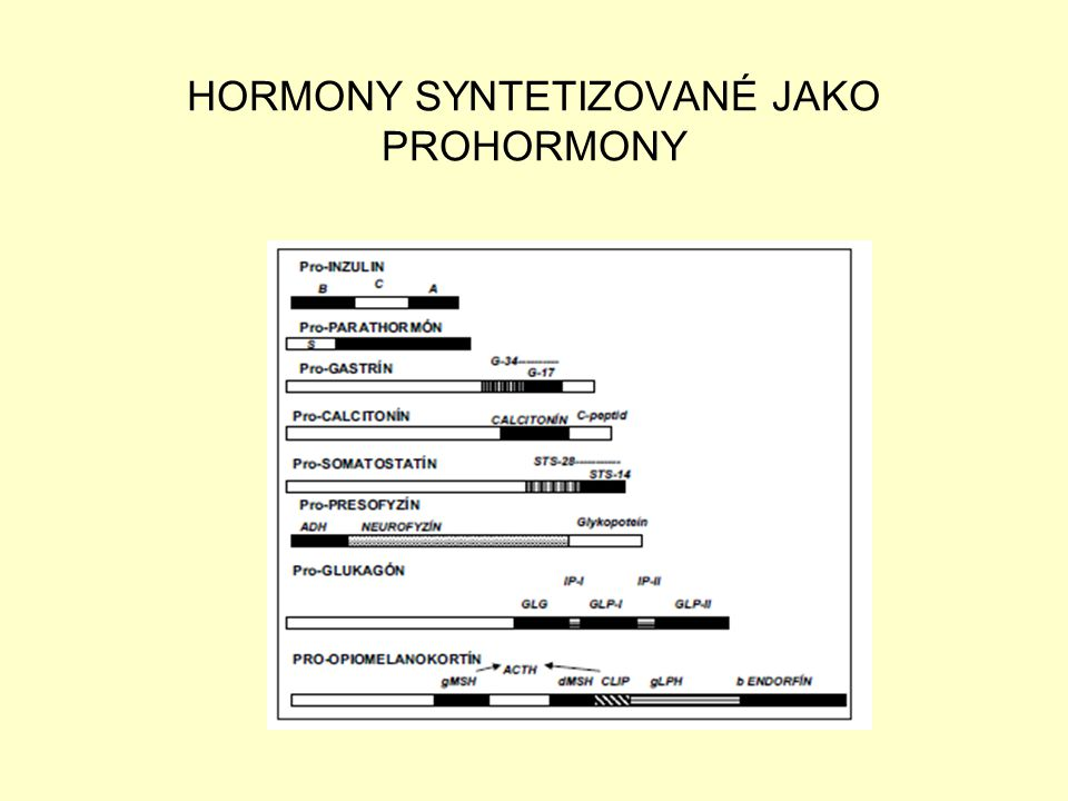 HORMONY SYNTETIZOVANÉ JAKO PROHORMONY