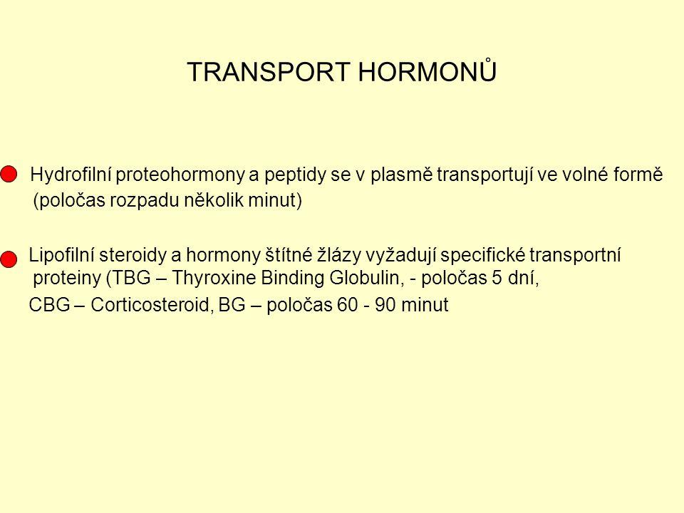 TRANSPORT HORMONŮ Hydrofilní proteohormony a peptidy se v plasmě transportují ve volné formě (poločas rozpadu několik minut)
