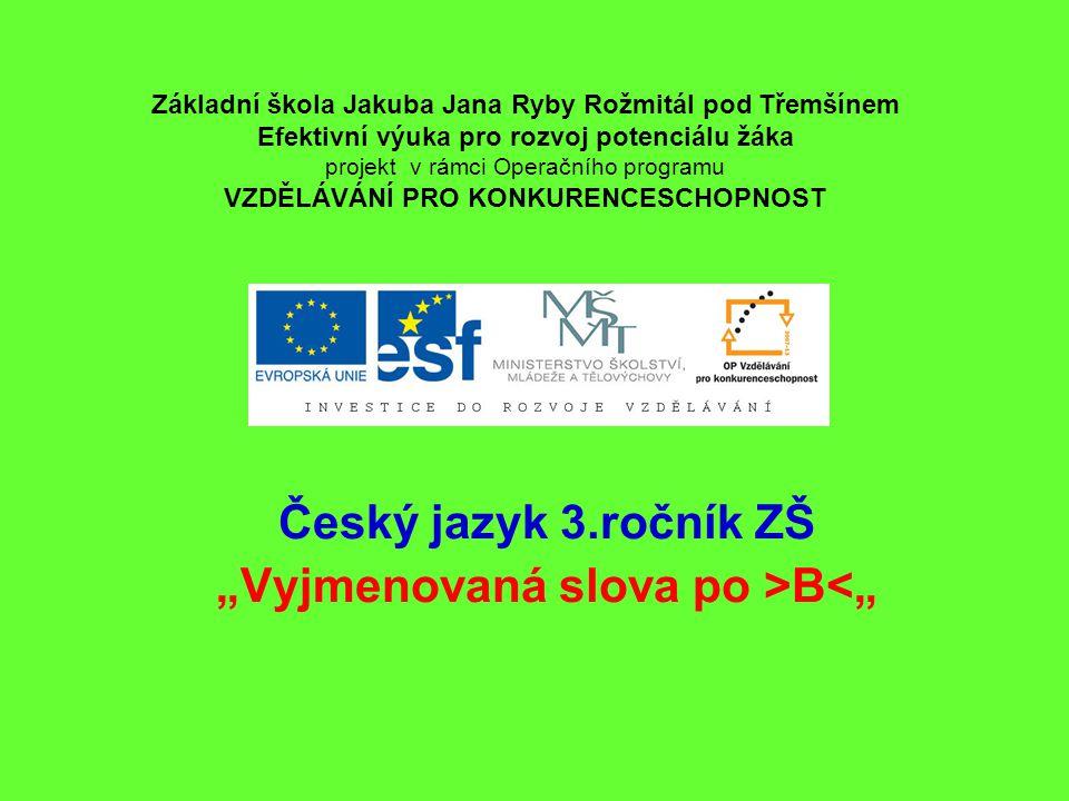 """Český jazyk 3.ročník ZŠ """"Vyjmenovaná slova po >B<"""""""