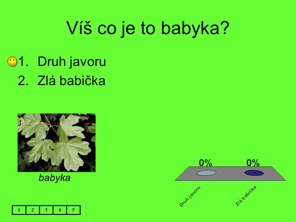Víš co je to babyka Druh javoru Zlá babička babyka 1 2 3 4 5