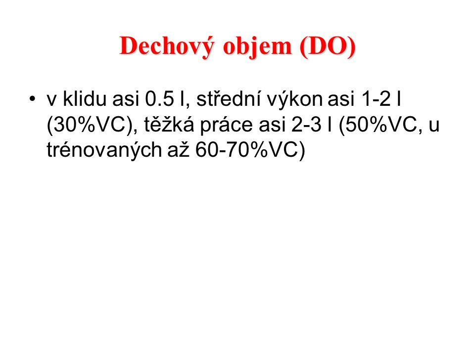 Dechový objem (DO) v klidu asi 0.5 l, střední výkon asi 1-2 l (30%VC), těžká práce asi 2-3 l (50%VC, u trénovaných až 60-70%VC)
