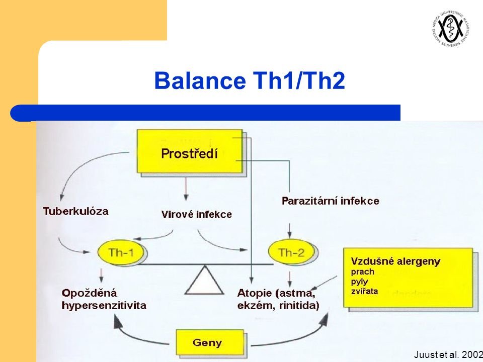 Balance Th1/Th2 Juust et al. 2002