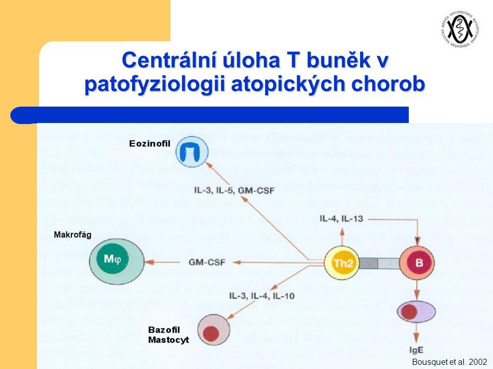 Centrální úloha T buněk v patofyziologii atopických chorob