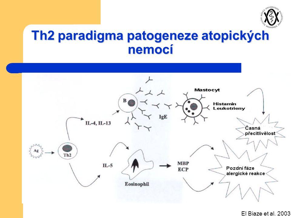 Th2 paradigma patogeneze atopických nemocí