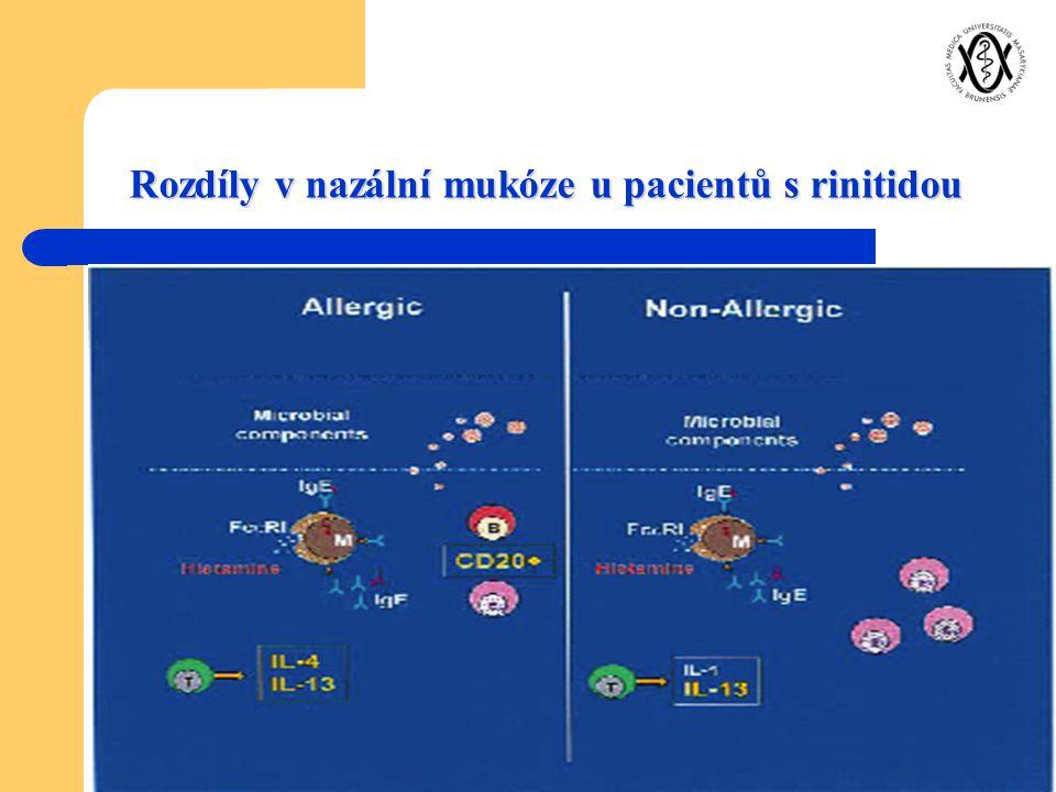 Rozdíly v nazální mukóze u pacientů s rinitidou