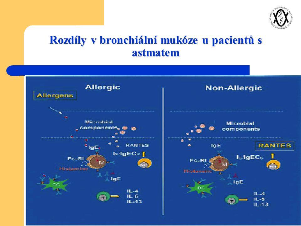 Rozdíly v bronchiální mukóze u pacientů s astmatem