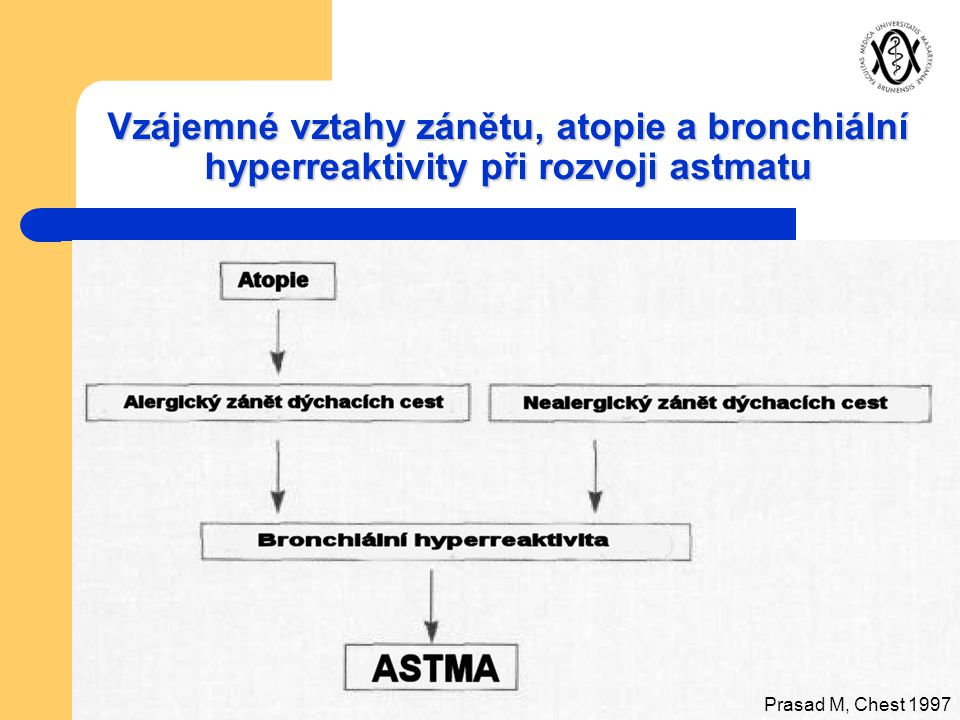 Vzájemné vztahy zánětu, atopie a bronchiální hyperreaktivity při rozvoji astmatu