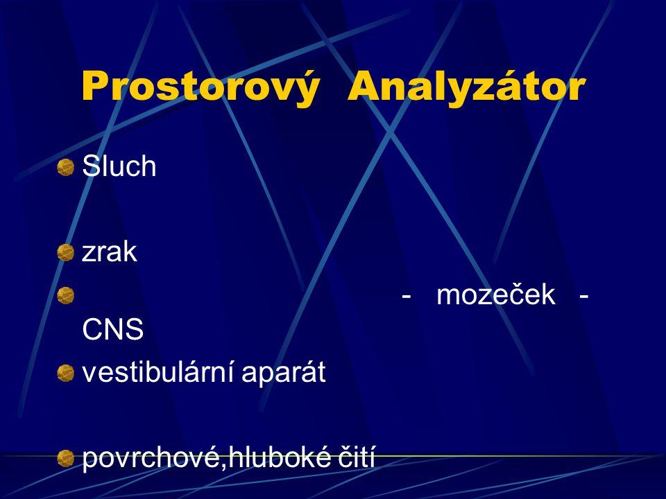 Prostorový Analyzátor