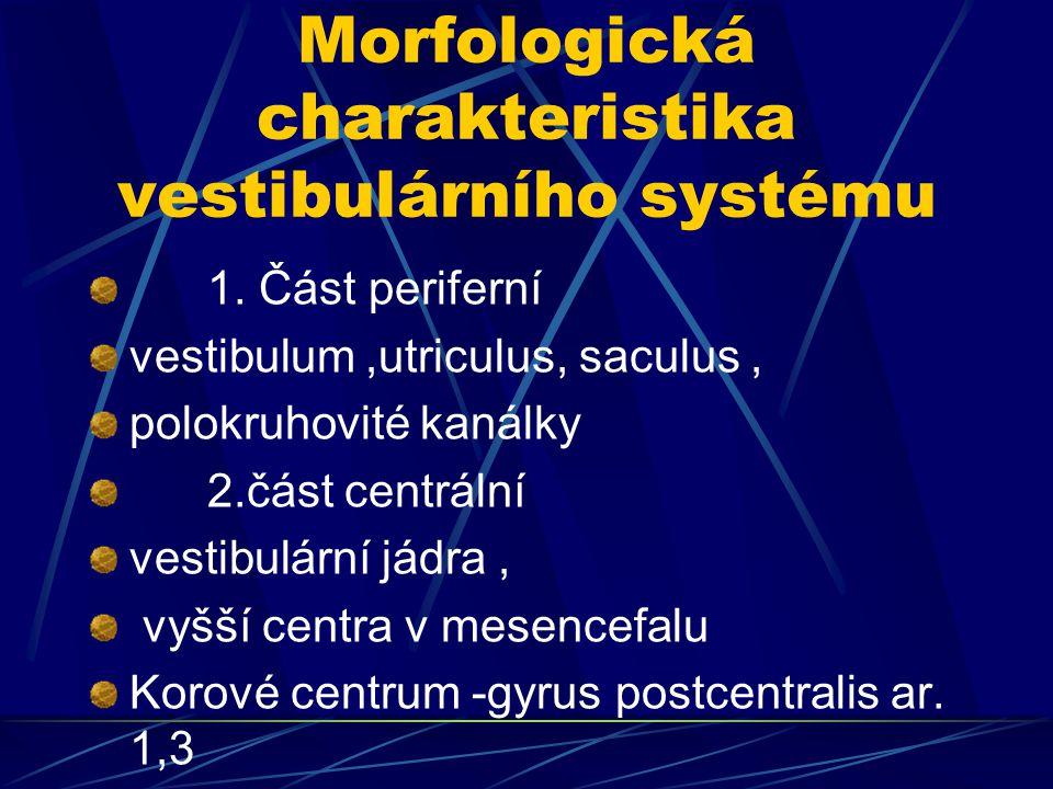 Morfologická charakteristika vestibulárního systému
