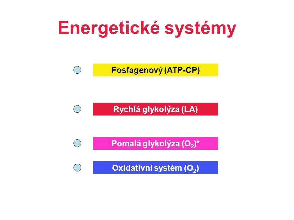 Energetické systémy Fosfagenový (ATP-CP) Rychlá glykolýza (LA)
