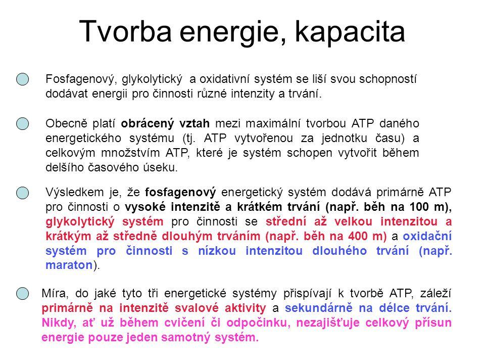 Tvorba energie, kapacita